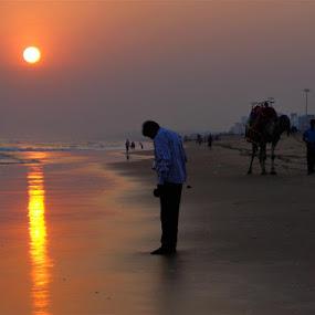 Sunset by Atreyee Sengupta - Landscapes Sunsets & Sunrises