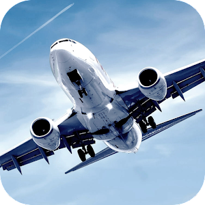Airplane Landing LWP