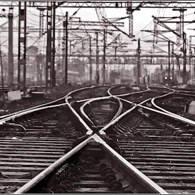 IN SEARCH OF THE RIGHT TRACK( OF LIFE ?) by Arijit Banerjee - Transportation Trains ( abstract, patterns, black and white, train, tracks, , shapes geometric patterns  )