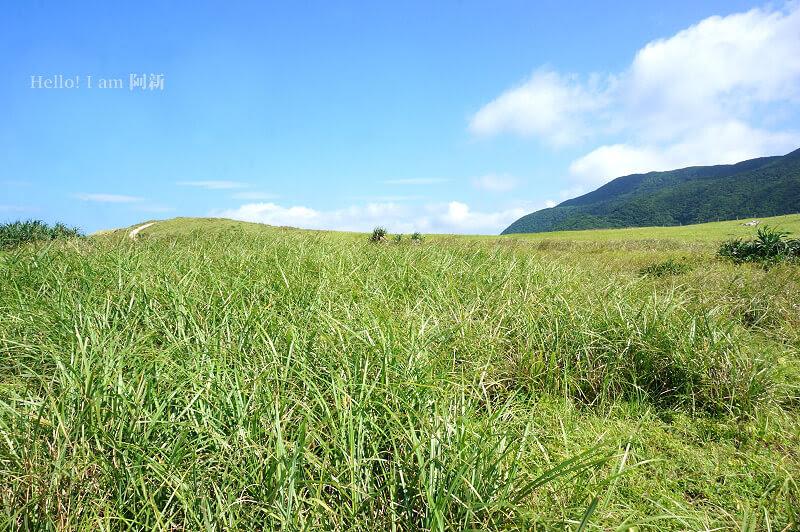 蘭嶼青青草原-3