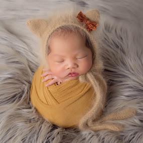 Baby Owl by Vcy Ho - Babies & Children Babies ( newborn photography )