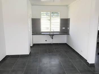 Appartement 3 pièces 54,91 m2
