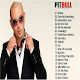 Pitbull's The Best Songs - 2019 OFFLINE