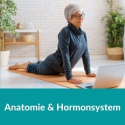 Hormonyogalehrerausbildung Körperlehre