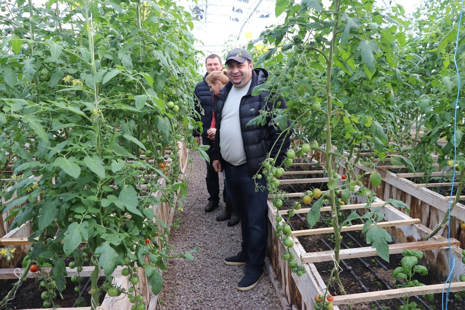 органическая ферма киев