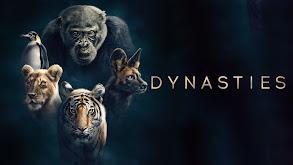 Dynasties thumbnail