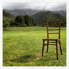 Photo: Wedding chair on the meadow