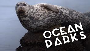 Ocean Parks thumbnail