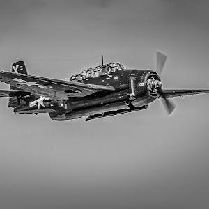 RonMeyers_WingsOverHouston-156.jpg