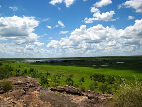Darwin to Kakadu National Park Australia // View from Ubirr Lookout into the floodplains