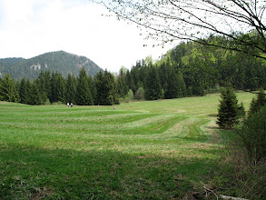 Photo: 07.Na łąkach w okolicach Sedla Pol'ana (845 m).
