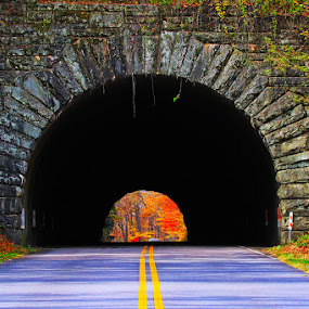 Little Switzerland Tunnel in Fall Colors by Shixing Wen - Landscapes Caves & Formations ( fall colors, little switzerland tunnel, blue ridge parkway, nature photography, north carolina )