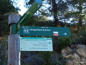 Photo: Seguim una estona el camí de Colldejou a la Torre de Fontaubella (GR 7)