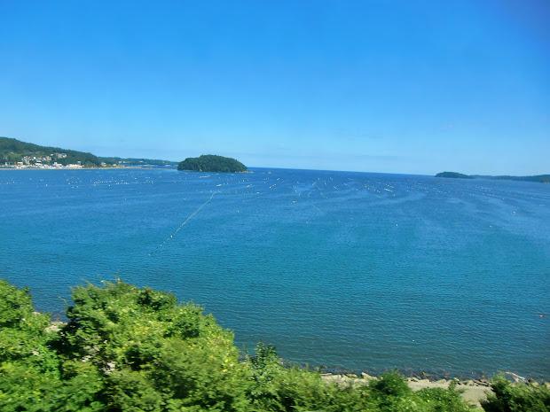 黒崎(東浜街道沿いから見た志津川湾)