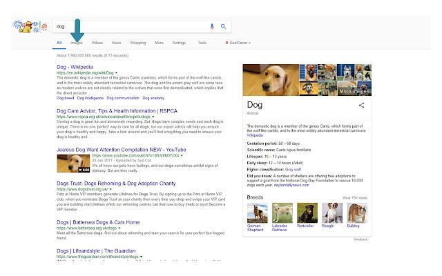 Betty - Fix Google Image Search