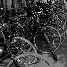 Old bikes... everything!!! by Harry Suryo - Transportation Bicycles