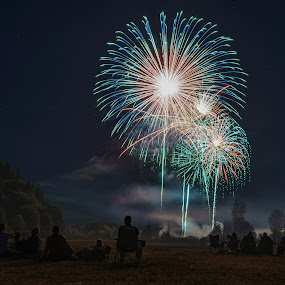 Tumwater Valley fireworks 2015 by Scott Wood - Public Holidays July 4th ( washington, event, 4th of july, fireworks, night, celebration, tumwater, people,  )