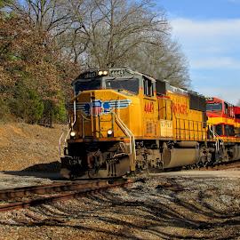 Facing The Sun by Rick Covert - Transportation Trains ( railroad, locomotive, arkansas, railroad tracks, arkansas photographer, trains )