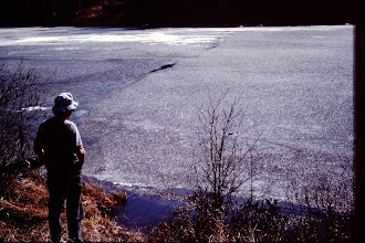 Photo: Spring 1991, honeycomb ice starting to break up.