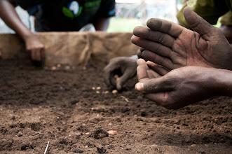 Photo: Nov -5th. Planting seeds (taken by Jonathan Kalan http://www.puravidaphotos.com/the-bop-project)