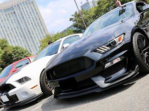 シェルビー GT350 のカスタム事例画像 Black Cobraさんの2019年08月19日05:55の投稿