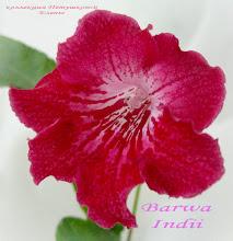Photo: Barwa Indii