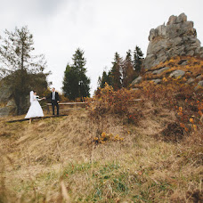 Wedding photographer Volodimir Lucik (VladimirL). Photo of 14.02.2016