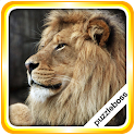 Jigsaw Puzzles: Lions