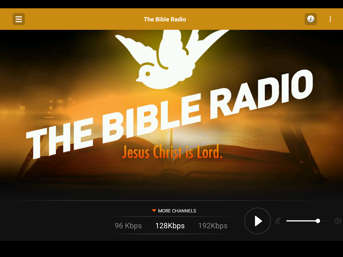 The Bible Radio- screenshot