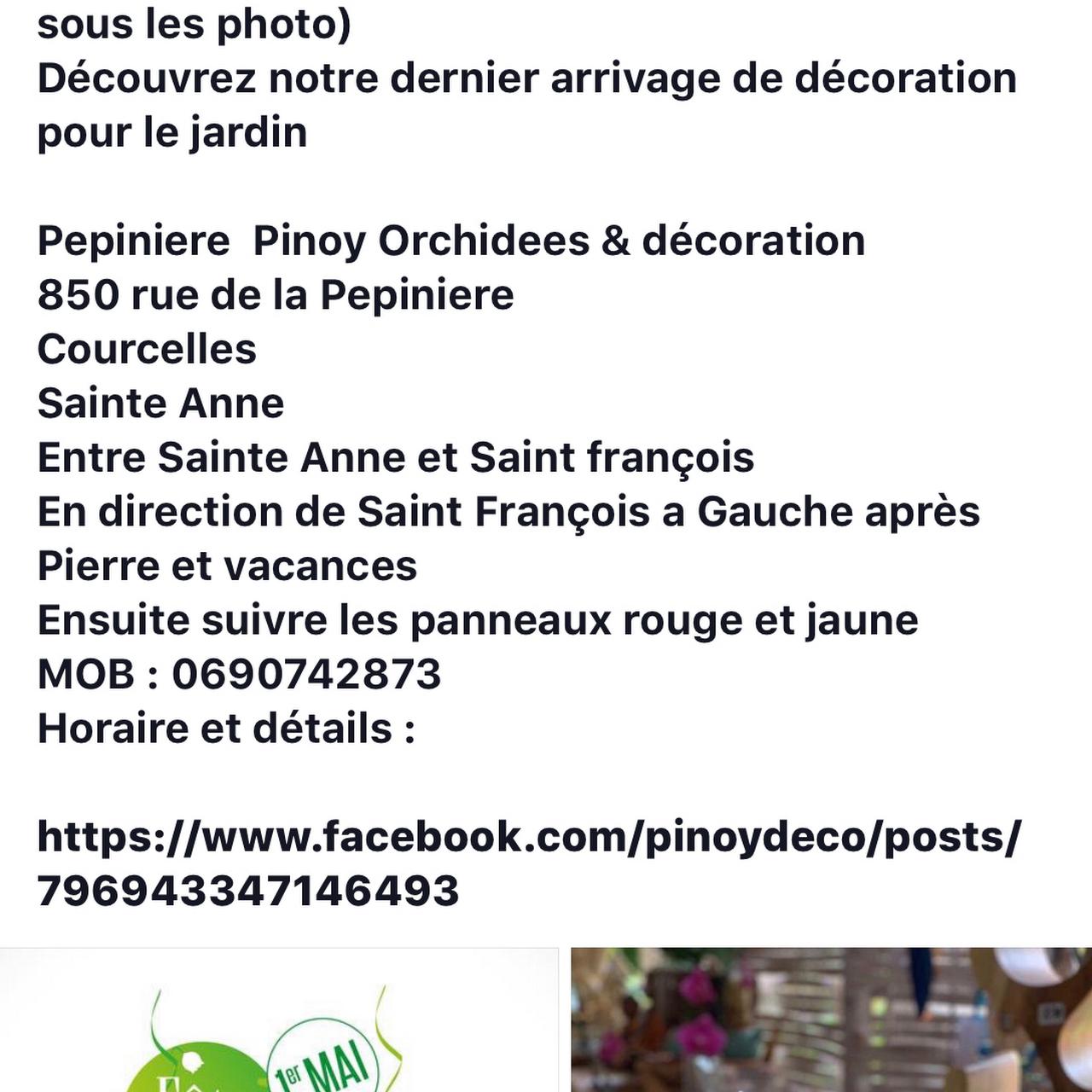 Pépinière Pinoy Orchidées et Déco - Pépinière à Sainte-Anne