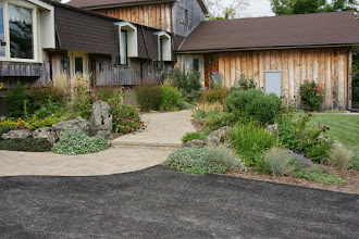 Photo: A garden should soften a path, and by pulling it out into the driveway, the path softens the driveway.