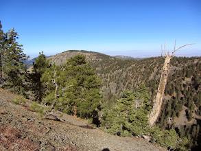 Photo: View northwest toward Blue Ridge
