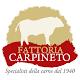 Fattoria Carpineto Download for PC Windows 10/8/7