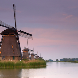 windmills by Nico Kranenburg - Buildings & Architecture Other Exteriors ( water, mills, holland, travel, landscape )