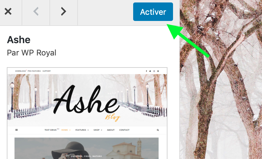 Wordpress-ashe-activer