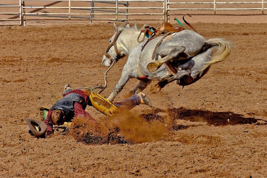 by Jim Moon - Sports & Fitness Rodeo/Bull Riding ( rider, cowboy, bucking bronc, whisper river photography, bronc riding,  )