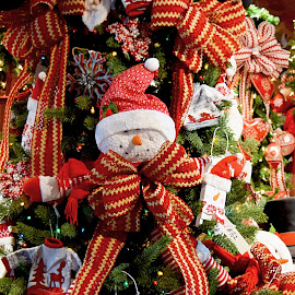 Trim The Tree by Millieanne T - Public Holidays Christmas