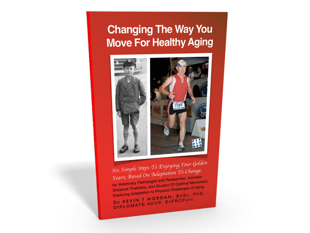ebook changing the way you move to prepare for aging