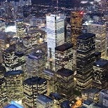 gorgeous night view of the financial district in Toronto in Toronto, Ontario, Canada