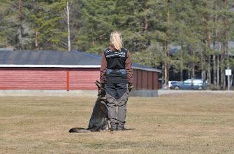 Photo: Balder og Hanne trener lydighet