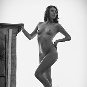 Helen by Andrey Stanko - Nudes & Boudoir Artistic Nude ( stanko, nude, b&w, naked, beauty )