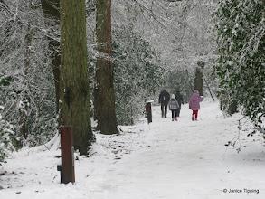 Photo: Winter Snow in Ashenground Wood