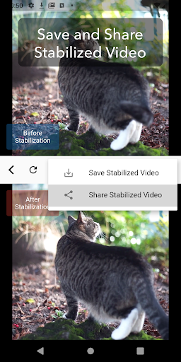 Deshake Video - Video Stabilization screenshot 5