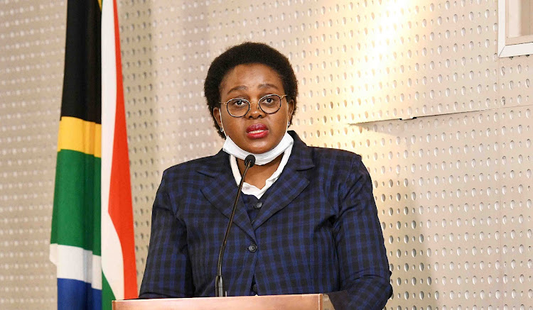 Tourism minister Mmamoloko Kubayi-Ngubane said SA is using WHO guidelines to determine which countries to allow in when international travel resumes.