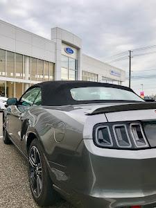 マスタング コンバーチブル  GT 2014のカスタム事例画像 Mustang GT 2014 Convさんの2018年10月27日09:11の投稿