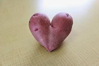 Photo: ハート型のジャガイモです。良い事ありそうですね。