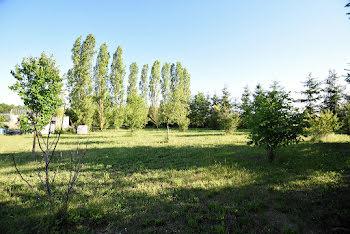 terrain à Vitry-la-Ville (51)