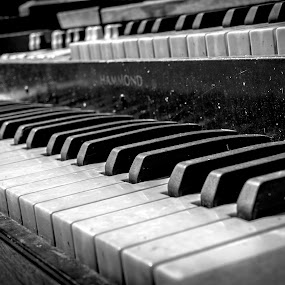 Old Organ by Eva Ryan - Artistic Objects Musical Instruments ( music, organ, black and white, dirty, antique,  )