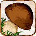 The Mushroom Book Icon