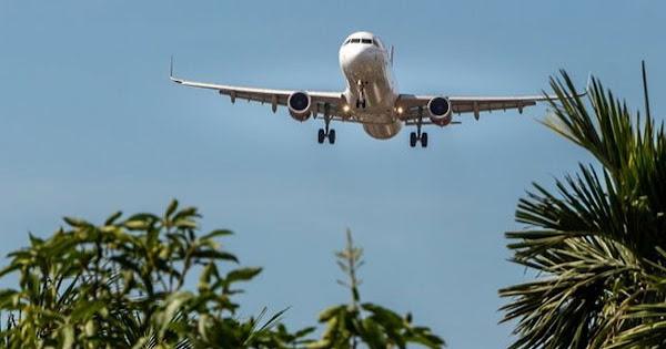доставка из Бразилии самолетом